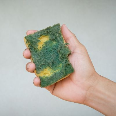 How often should you replace household items? Old sponge