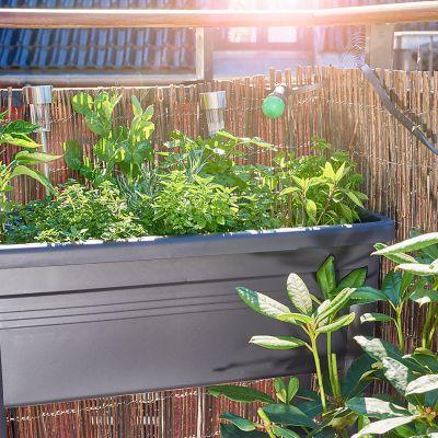 Jak uprawiać zioła i warzywa na balkonie. Ogródek ziołowy.
