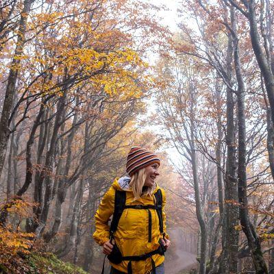Wandern im Wald - Frau spaziert durch einen nebligen Wald
