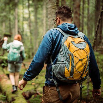 Wędrówka po lesie – para balansuje na zwalonym drzewie