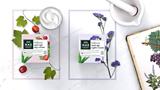 master-more-bellezza-products-bellezza-anti-age-day-cream