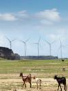 Only Love Windenergie 1