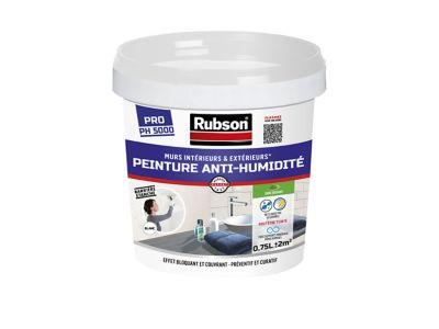Peinture Anti-Humidité