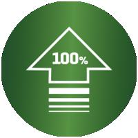 """Symbole pour """"100% Persil Performance""""."""