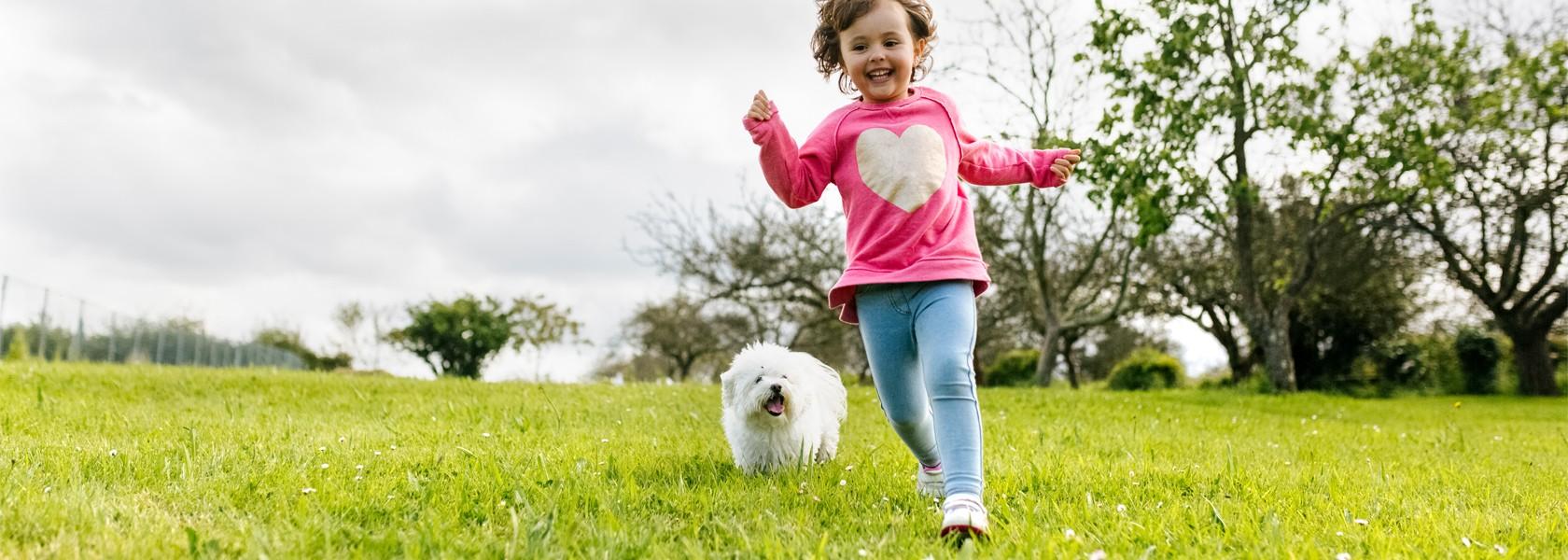 Ein kleines Mädchen läuft lachend über eine Wiese, im Hintergrund ein kleiner weißer Hund.