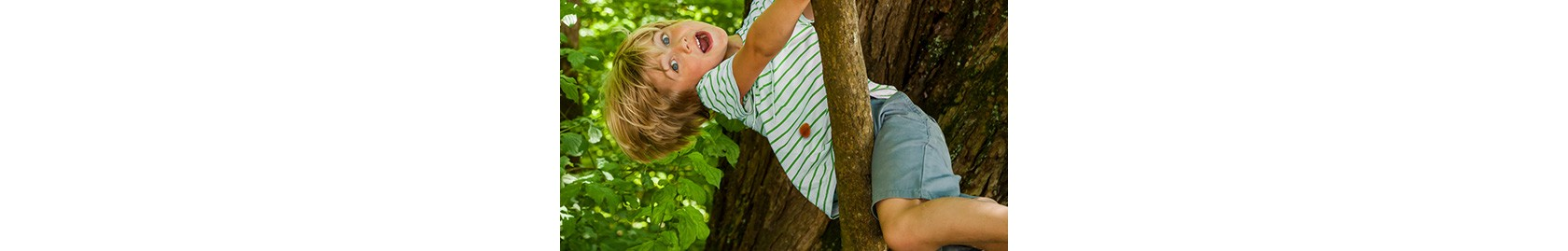 Blonder Junge mit weiß-grün gestreiftem T-Shirt sitzt in einem Baum mit hellgrünen Blättern
