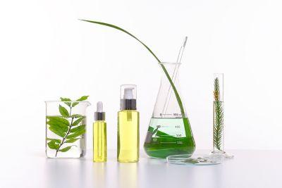 Verschiede Glasbehälter mit Pflanzen sowie Glasspender mit Öl.