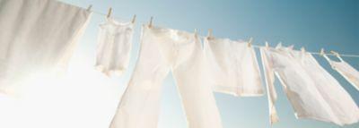 Frischgewaschene weiße Kleidung wie Hose, Rock und Hemd hängen an einem sonnigen Tag an der Wäscheleine im Garten.