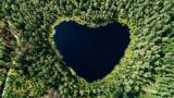Sicht von oben auf einen herzförmigen See in einem dichten Wald