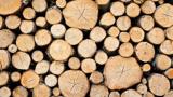 Ein Stapel Holz
