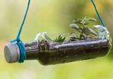 5 ways to use old plastic bottles creatively