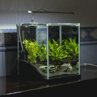 How to reseal an aquarium with aquarium safe sealant