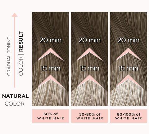 toning för grått hår